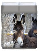 Donkey And The Mule Duvet Cover
