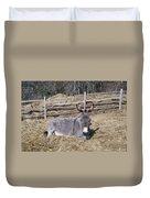 Donkey In Hay Duvet Cover