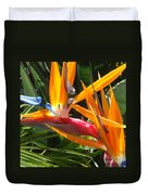 Double Bird Of Paradise - 1 Duvet Cover