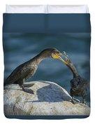 Double-crested Cormorants Duvet Cover