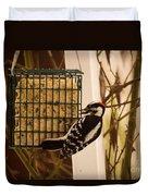 Downy Woodpecker 1 Duvet Cover