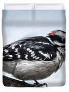 Downy Woodpecker 3 Duvet Cover