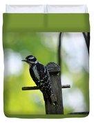 Downy Woodpecker 7448 Duvet Cover