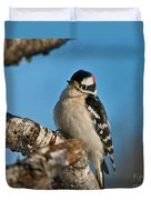Downy Woodpecker Pictures 23 Duvet Cover
