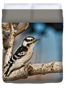 Downy Woodpecker Pictures 34 Duvet Cover