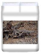 Dragon Skull Duvet Cover