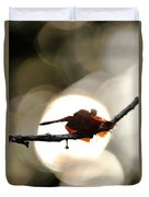 Dragonfly Bathing In Sunset Duvet Cover