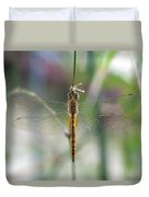 Dragonfly Closeup Duvet Cover