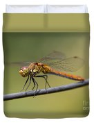 Dragonfly On A Wire Duvet Cover