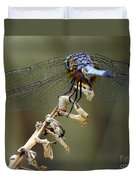 Dragonfly Wing Details Duvet Cover