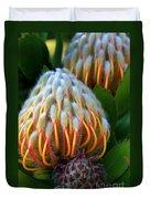 Dramatic Protea Flower Duvet Cover