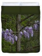 Draping Wisteria Frutescens Wildflower Vines Duvet Cover