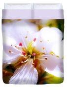 Dreamy Cherry Blossom Duvet Cover