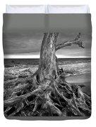 Driftwood On Jekyll Island Black And White Duvet Cover