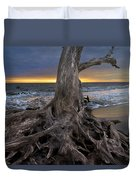 Driftwood On Jekyll Island Duvet Cover by Debra and Dave Vanderlaan