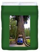 Drive Through Redwood Tree Duvet Cover