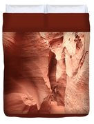 Dry Fork Sandstone Duvet Cover by Adam Jewell