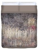 Dry Grasses And Bare Trees In Winter Forest Duvet Cover by Elena Elisseeva