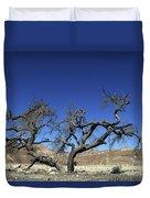 Dry Solitary Tree  Duvet Cover