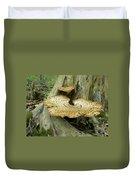Dryads Saddle Bracket Fungi - Polyporus Squamosus Duvet Cover
