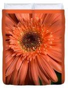 Dsc261d2-004 Duvet Cover