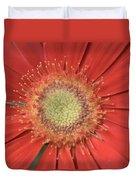 Dsc286-003 Duvet Cover