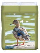Duckling By The Lake  Duvet Cover