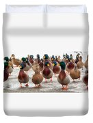 Duckorama Duvet Cover by Bob Orsillo