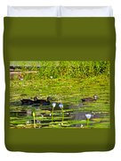 Ducks In Lily Pond Duvet Cover