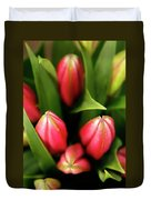 Dutch Bulbs Duvet Cover