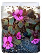Dwarf Purple Monkeyflower In Lava Beds Nmon-ca Duvet Cover