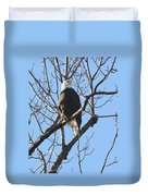 Bald Eagle Sunny Perch Duvet Cover