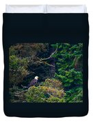 Eagle In Trees  Duvet Cover