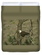 Eagle On A Tree Branch Duvet Cover
