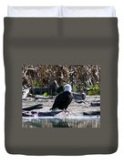Eagle Posing By Water Duvet Cover