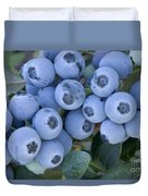 Early Blue Blueberries Duvet Cover