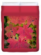 Early Fall Of Norway Maple Duvet Cover