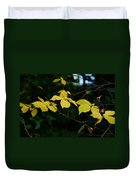 Early Fall Of Wych Elm Duvet Cover