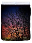 Early Spring Dusk  Duvet Cover