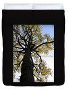 Earth Day Special - Ancient Tree Duvet Cover