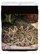 Easter Diamond Back Rattlesnake Duvet Cover
