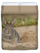 Eastern Cottontail Wyoming Duvet Cover