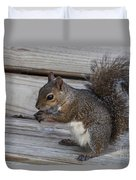 Eastern Gray Squirrel-4 Duvet Cover