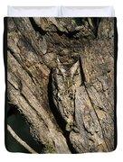 Eastern Screech-owl Otis Asio Wild Texas Duvet Cover