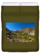 Eastern Sierras 11 Duvet Cover