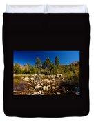 Eastern Sierras 21 Duvet Cover