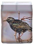 Common Starling Duvet Cover