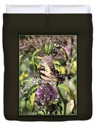 Eastern Tiger Swallowtail - Butterfly Duvet Cover