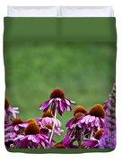 Echinacea Purpurea Duvet Cover