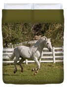 Effortless Gait D3028 Duvet Cover by Wes and Dotty Weber